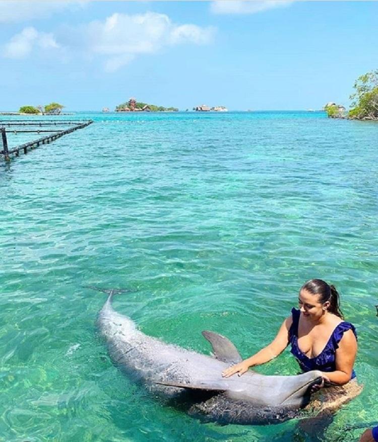 acuario de delfines islas del rosario